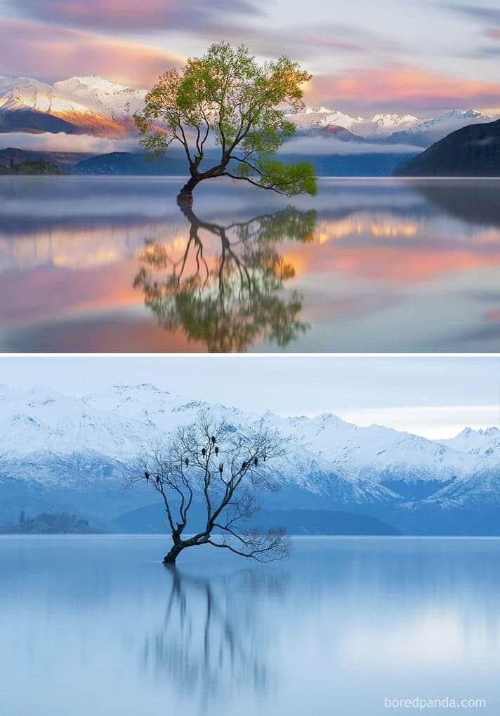 Озеро Ванака, Новая Зеландия
