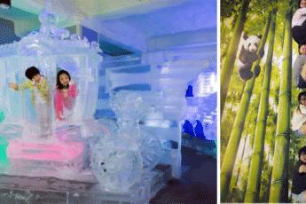 ледовый музей и музей иллюзий в Сеуле